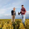 Quentin Vincey mit seiner Frau Marine Weinreben Chardonnay
